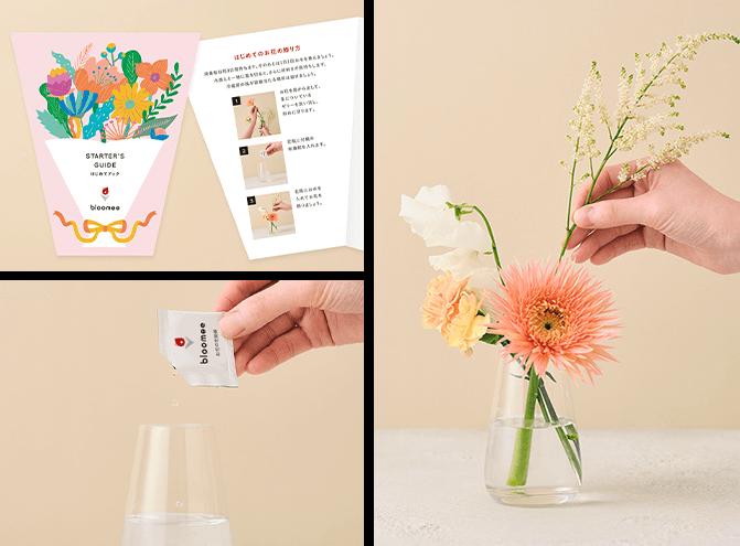 お花の解説書、栄養剤、お花の画像がまとめられた写真